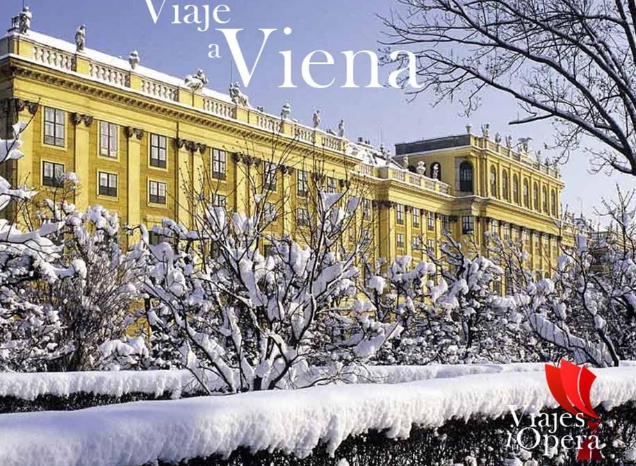 Viaje fin de año en Viena 9ª de Beethoven